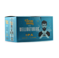 Picture of Fortune Favours The Wellingtonian New Zealand IPA 6pk cans
